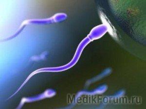 Сенсация: для зачатия ребенка мужчины больше не нужны!
