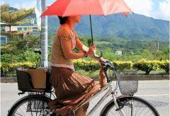 Женщинам вредно кататься на велосипеде?