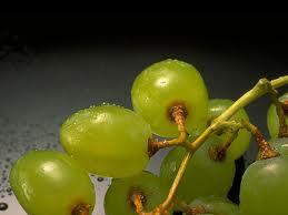 Экстракт виноградных косточек снижает риск развития рака предстательной железы вдвое