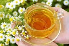 Ромашковый чай, сельдерей и петрушка защитят от рака