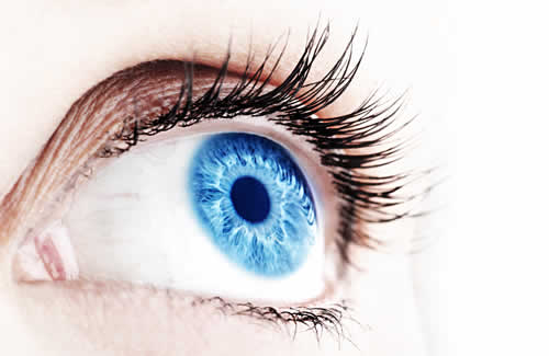 Сайт про глаза proglaza.ru