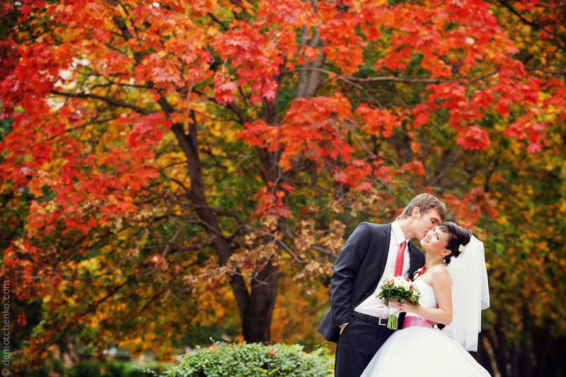 Благословение осени. Свадьба