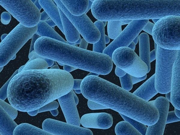 Микробиоценоз кишечника у женщин