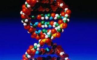 С помощью генетического теста можно предсказать время наступления менопаузы