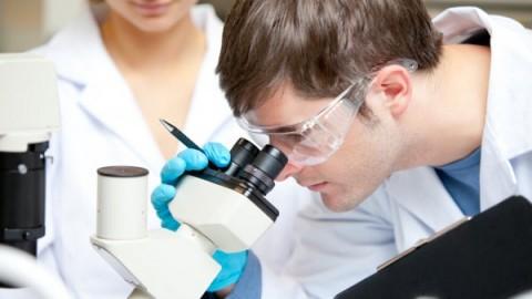 Ученые устранили генетические мутации организма до процесса зачатия