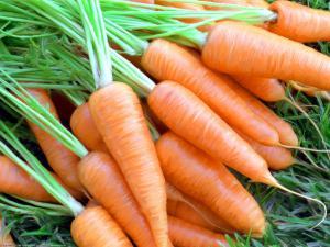 Морковь может победить рак