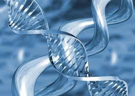 Оральные контрацептивы достоверно снижают заболеваемость раком яичников