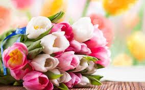 Флорист, как залог прекрасного настроения.