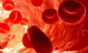 Ученые клонировали клетки, производящие инсулин