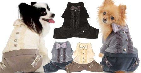 Бизнес на пошиве одежды для животных
