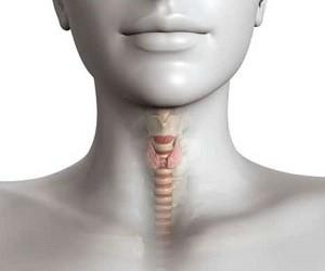 12 признаков проблем со щитовидкой