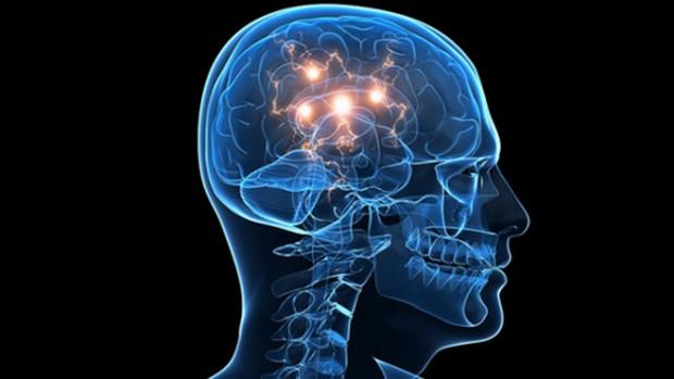 Эксперты нашли участки головного мозга, которые отвечают за любовь и сексуальное желание