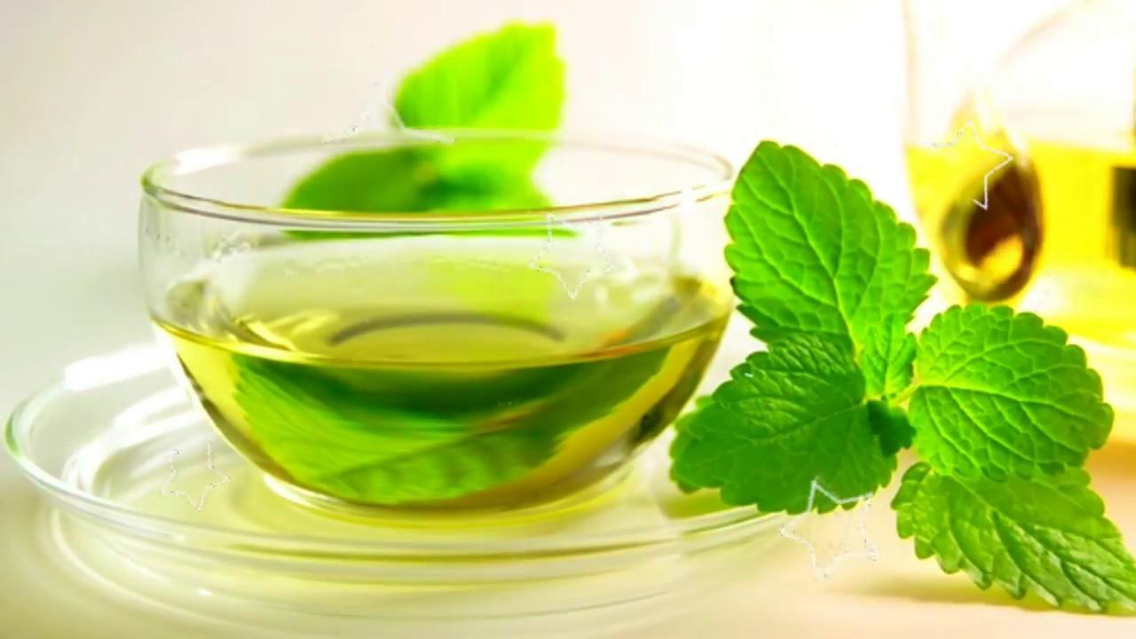 Лечебные свойства мяты: советы диетологов