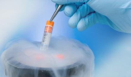 Что делать, если уровень сахара в крови резко упал: опасность гипогликемии