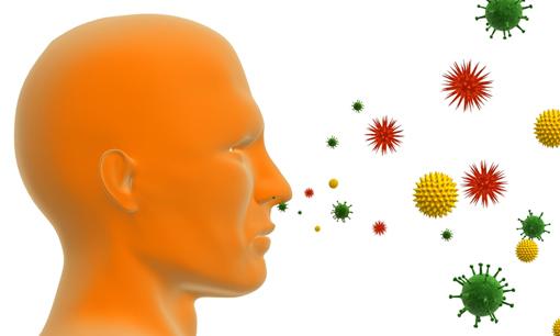 Аллергия: лечение и профилактика