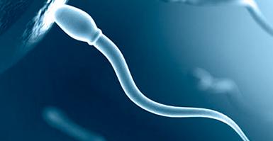 Лучшие способы улучшения качества спермы
