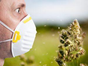 Главные летние аллергены: профилактика и лечение поллинозов