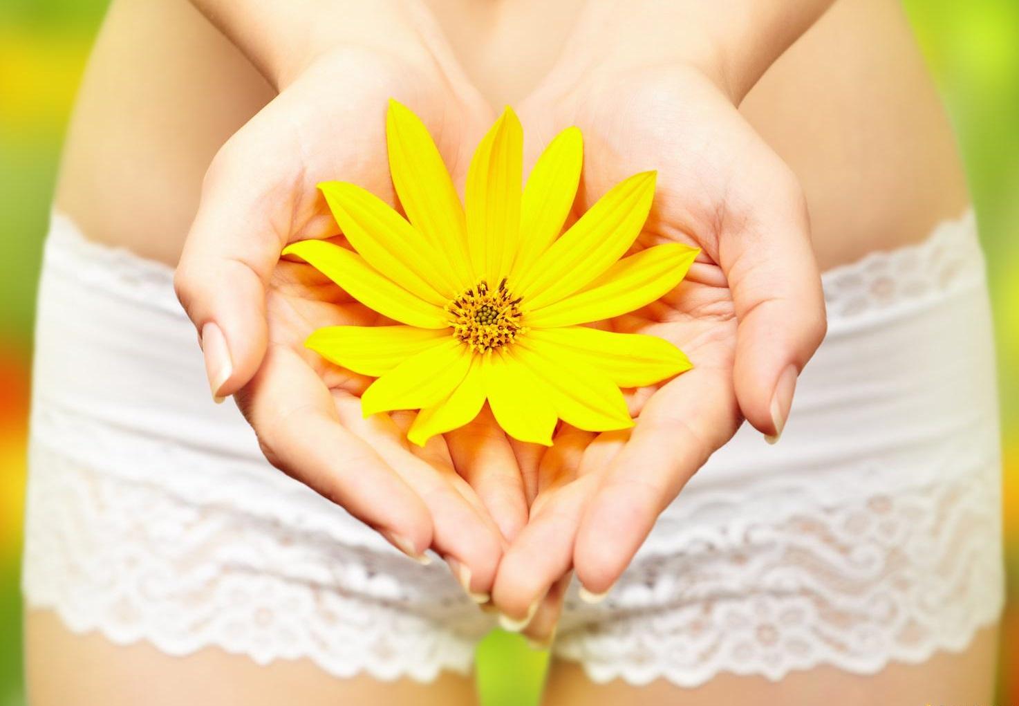 Травы для восстановления менструального цикла