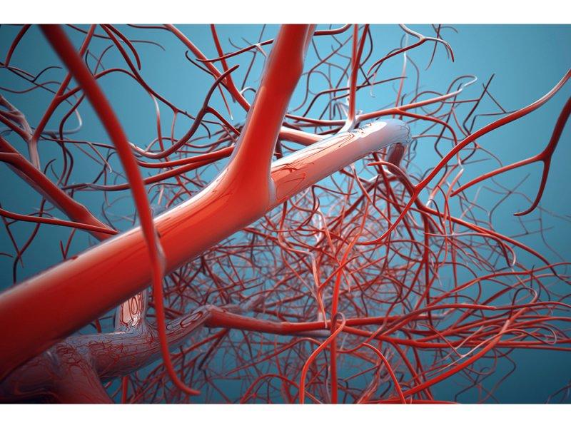 Растительные флавоноиды способны лучше всего защищать сосуды