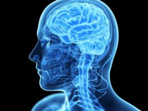 В России стали чаще болеть раком мозга