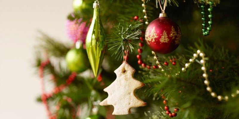 Как выбрать хорошую елочку на новый год?