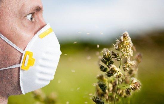 Сыпь, краснота, зуд — избавляемся от аллергии быстро