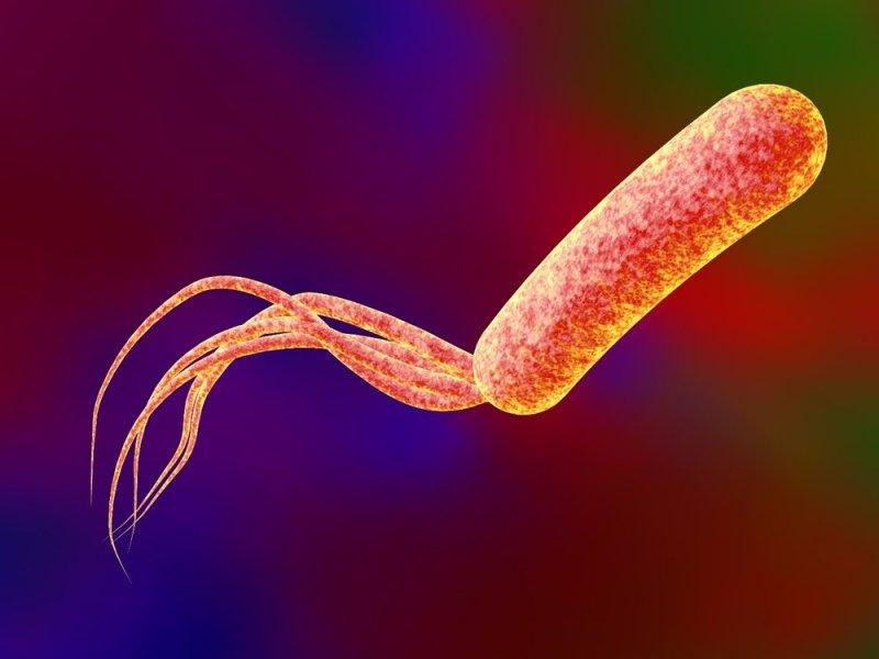 Стал понятен механизм антибиотикорезистентности
