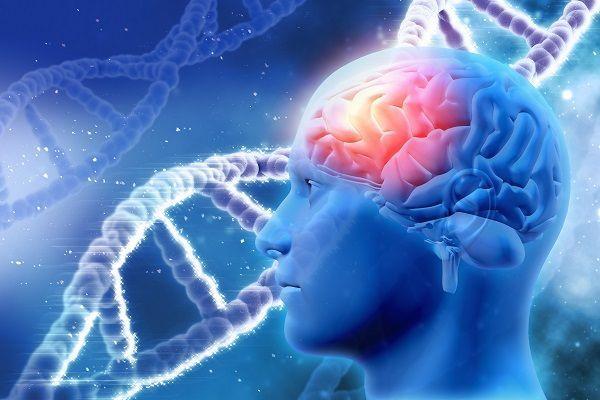 Коронавирус и половые гормоны: облысение может быть фактором риска, а антиандрогены — лечением