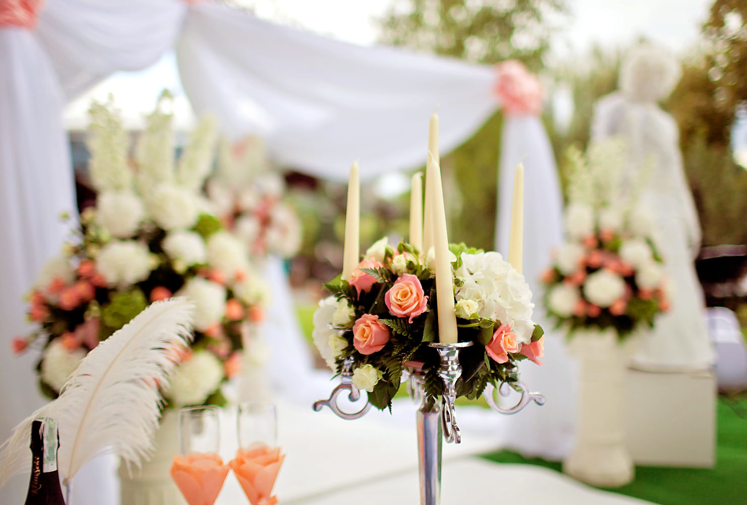 Организация свадьбы в Москве и Подмосковье